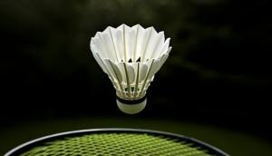 Goose feather badminton