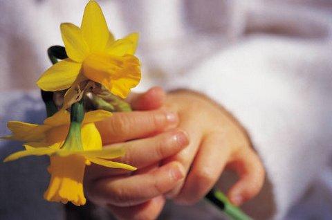 child-holding-daffodils