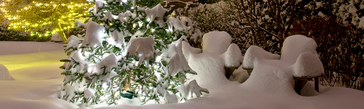 header-2-snow