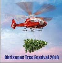 Advertisement for the Christmas Tree Festival 2018